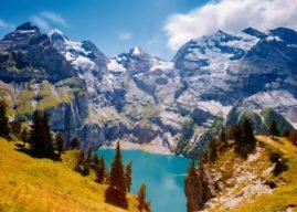 A rara flor Edelweiss nos Alpes Suíços, a Visão TV foi conferir