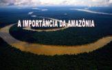 Qual a importância da Amazônia para o mundo e porquê tanta cobiça ?